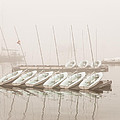 Fogged In Again by Bob Orsillo
