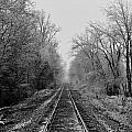 Foggy Ending In Black And White by David Zarecor