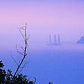 Foggy Evening In Portofino by Alex HERMAN
