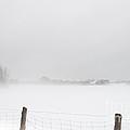 Foggy Farm by Cheryl Baxter