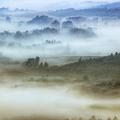 Foggy Flatlands - Blue Ridge Parkway by Dan Carmichael