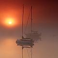 Foggy Harbor Sunrise by Martin Radigan