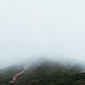 Foggy Hills by Amelia Fletcher