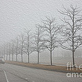 Foggy January by David Bearden