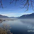 Foggy Lake by Mats Silvan