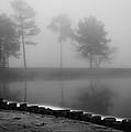 Foggy Landscape by Parker Cunningham