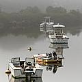 Foggy Moorings by Carl Jacobs