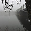 Foggy Morning In Paradise - The Bridge by Christopher Plummer
