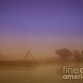 Foggy Morning by Izet Kapetanovic