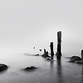 Foggy New England Sea by Stephanie McDowell