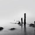 Foggy New England Sea by Stephanie McDowell
