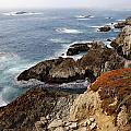 Foggy Pacific Coast  by Bryan Shane