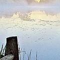 Foggy Pond by Marilyn Smith