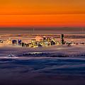 Foggy Sunrise Crop by Alexis Birkill