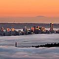 Foggy Sunset by Alexis Birkill