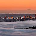 Foggy Sunset Crop by Alexis Birkill