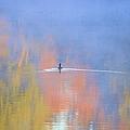 Foggy Swim by Bonfire Photography