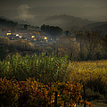 Foggy Tuscan Valley  by Prints of Italy