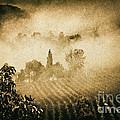 Foggy Tuscany by Silvia Ganora