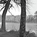 Foggy Waters Bw by Bonfire Photography