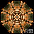Folded 8-pointed Kaleidoscope Image by Richard Ortolano