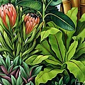 Foliage IIi by Catherine Abel