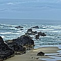 Follow The Ocean Waves by Image Takers Photography LLC - Carol Haddon