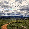 Follow The Path by Tony Boyajian