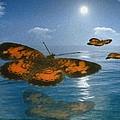 Follow The Sun by Jack Zulli