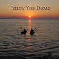 Follow Your Dreams by Aimee L Maher Photography and Art Visit ALMGallerydotcom