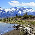 Following The Athabasca River by Teresa Zieba