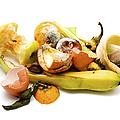 Food Waste by Fabrizio Troiani
