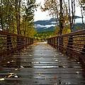 Foot Bridge In Grand Teton by Howard Edgley