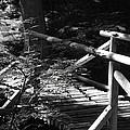 Foot Bridge by John Schneider