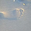 Foot Print In The Sand by Jocelyn Stephenson