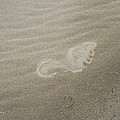 Foot Print In The Sand by Tom Janca