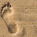 Footprint In The Sand by Georgette Grossman