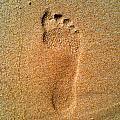 Footprint by Pat Downes