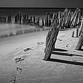 Footprints In The Sand Among The Pilings by Randall Nyhof