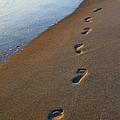 Footprints In The Sand by Amy Jackson