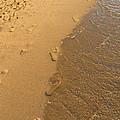 Footprints In The Sand by Brenda Kean