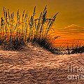 Footprints In The Sand by Marvin Spates