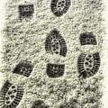 Footprints In The Snow by Ola Allen