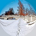 Footprints In The Snow - Sphere by Larry Jost