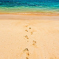 Footprints Leading To Paradise by Pierre Leclerc Photography