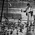 For The Birds Bw by Timothy Hacker