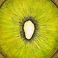 Forbidden Fruit by Linda Carmel
