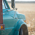 Ford Grain Truck by David Parker