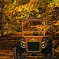 Ford by Jack Zulli