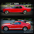 Ford Mustang Old Or New by Paul Ward